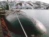 Атомная подводная лодка Проект 671РТМ Щука - фото взято с электронной энциклопедии Военная Россия